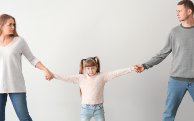 What is Shared Parental Responsibility?